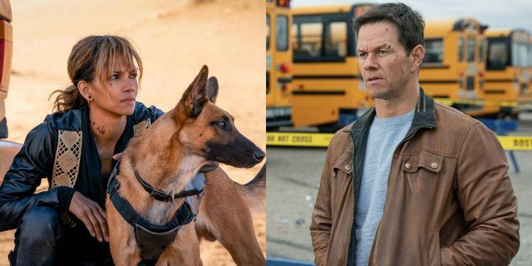 Halle Berry se junta a Mark Wahlberg no elenco de Our Man From Jersey, da Netflix